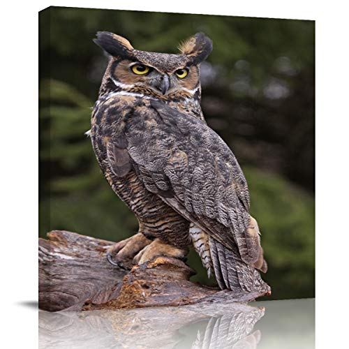 Canvas Wall Art - Great Horned Owl Sitting on a Tree Stump Wall Decor Paintings Pictures for Living Room Modern Artwork Stretched and Framed Ready to Hang 16