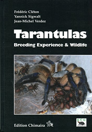 Tarantulas - Breeding Experience & Wildlife (Spiders)