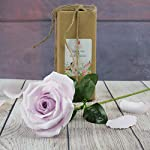 Elegant-Purple-Lavender-Paper-Rose-for-your-mystical-love-Handmade-Art-Paper-Flower-to-melt-her-heart-Ideal-for-Home-Office-Decoration-Wedding-Bouquet-Single-Long-Stem