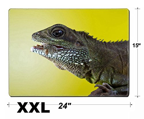 Liili Extra Large Mouse Pad XXL Extended Non-Slip Rubber Gaming Mousepad 24x15 Inch, 3mm thick Stitched Edge Desk Mat Close up portrait of beautiful water dragon lizard reptile eating an insect Photo