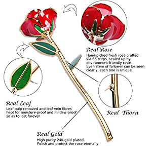 Mother's Day Gifts 24K Gold Dipped Real Rose Everlasting Rose for Mom, Forever Flower Anniversary Gifts for Her, Women Girls Wedding Birthday Presents(with Moon Stand, Gift Box) 3
