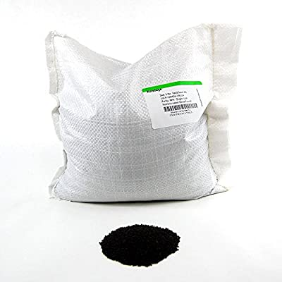 Rutabaga Seeds - American Purple Top: Non-GMO Vegetable Garden & Microgreens Seeds