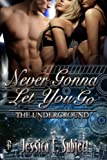 Never Gonna Let You Go (The Underground Book 1)