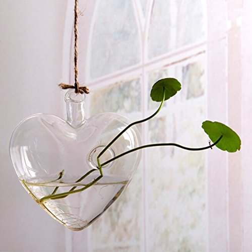 Clear Glass Plant Containers Hanging Hydroponics Plant Flower Pot Hanging Ornament for Indoor and Outdoor (Heart)