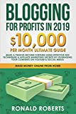 Blogging for Profits in 2019: 10,000/month ultimate guide - Make a Passive Income Fortune using Effective Seo Techniques & Affiliate Marketing Secrets ... on YouTube & Social Media (Make Money Online)