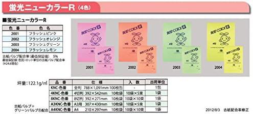 蛍光色画用紙(ニューカラーR) 4切判10枚 2004 フラッシュレモン