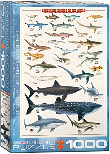 1000 piece fish puzzles - 9