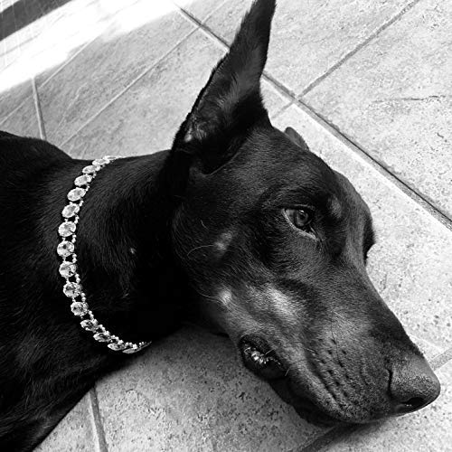My Other Best Friend (MOBF) Premium Designer Crystal Rhinestone Pet Necklace Jewelry for Pets Dogs Cats Male Female Perfect for Dog Shows Costume
