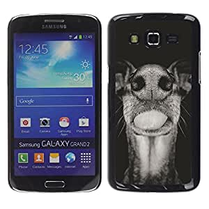 Be Good Phone Accessory // Dura Cáscara cubierta Protectora Caso Carcasa Funda de Protección para Samsung Galaxy Grand 2 SM-G7102 SM-G7105 // Australian Cattle Dog Black White Muzzle