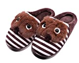bedroom ideas for young women SCOWAY Toddler Kids Boys Girls Slippers Cute Cartoon Animal Soft Warm Non-Slip Winter Indoor House Shoes (2.5-3 M US Big Kid, Brown)