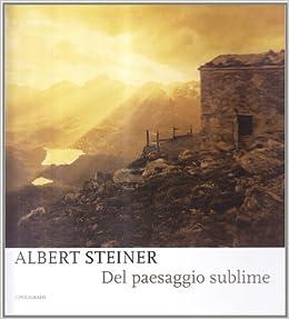 Albert Steiner. Del paesaggio sublime. Catalogo della mostra (Padova, 29 marzo-18 maggio 2008)
