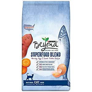 Purina Beyond Natural Dry Cat Food Superfood Blend  Pound