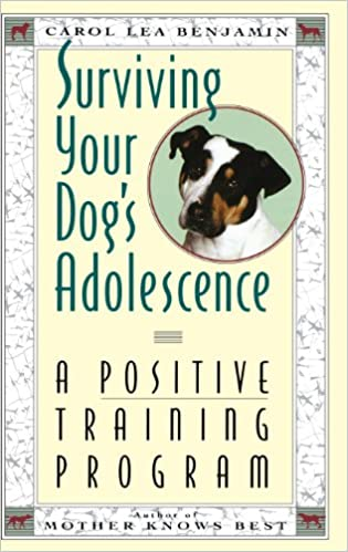 How To Understand And Train Your Bulldog Puppy Or Dog Guide Book Ebook Rar
