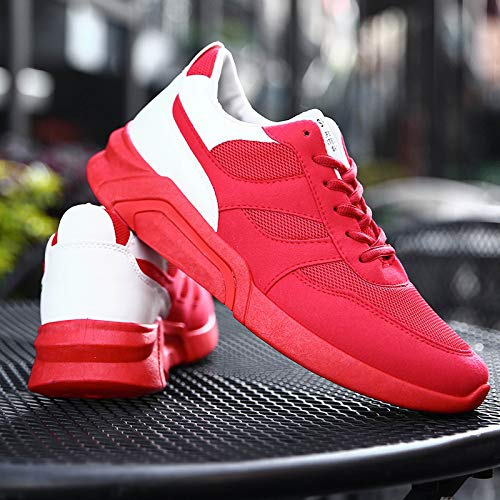Sneakers Hasag Shoes Mesh red Transpirable Deodorant Male Men's fwqZO