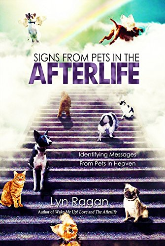 (Signs From Pets In The Afterlife: Identifying Messages From Pets in Heaven)