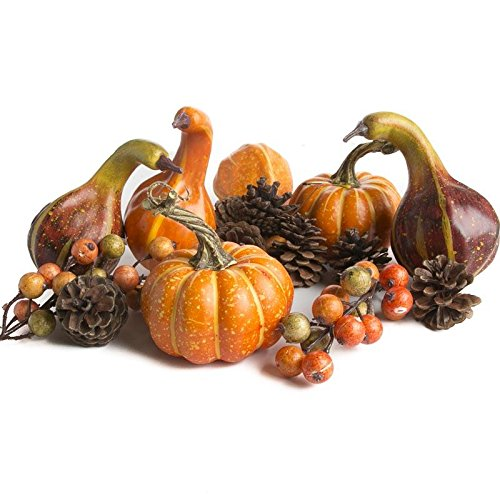 Factory Direct Craft Package of Assorted Autumn Pinecones,