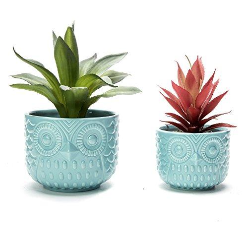 Nattol Owl Succulent Planter, Turquoise Animal Planter Pots with Drainage, Set of 2