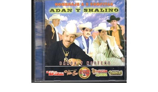 El As De la Sierra, El halcon de la Sierra, Los Compadres Del Sinaloa, Duenos Del Norte. El Compa Rivas - Homenaje a 2 Compitas: Adan Y Chalino Sanchez ...