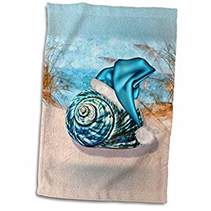51QeF3GrqnL._SS300_ 50+ Beach Hand Towels and Nautical Hand Towels For 2020