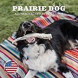 Prairie Dog Pet Products Super Elk Antler Split