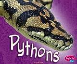 Pythons, Jody Sullivan Rake, 1429612509