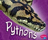 Pythons (African Animals)