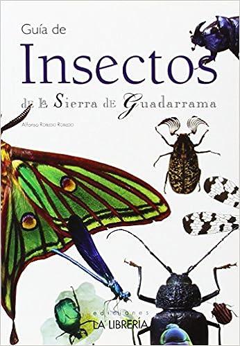 Guía de insectos de la Sierra de Guadarrama Guias Didacticas: Amazon.es: Robledo Robledo, Alfonso: Libros