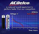 Powermax USA ACDelco AAA Batteries, Alkaline