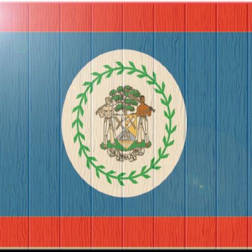Rikki Knight Belarus Flag on Distressed Wood Design Art Ceramic Tile 4 by 4-Inch