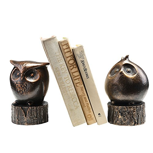 Wide Eyed Owl Bookends ()