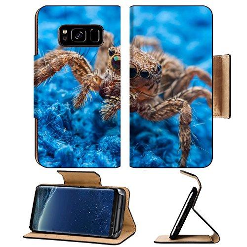Liili Premium Samsung Galaxy S8 Plus Flip Pu Leather Wallet Case jumping spider close up 29339572