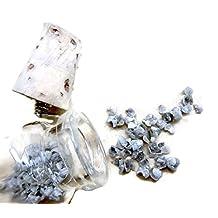 10 Carats, 3mm, Gray Rough Diamond Cave Shavings Bead, Bottle Jewelry, Natural Diamond Glass Vial Pendant