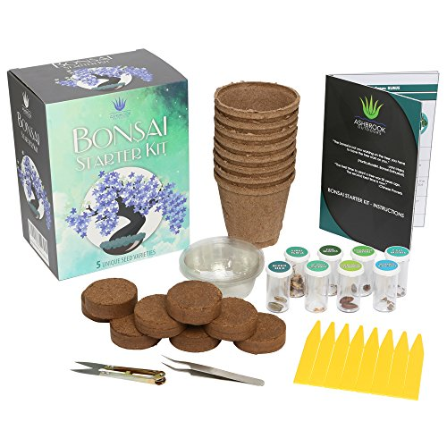 Ashbrook Outdoors Bonsai Starter Kit - Everything You Need to Grow 8 Colorful Bonzai Trees - Complete Gardening Set