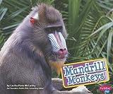 Mandrill Monkeys, Cecilia Pinto McCarthy, 1620651068