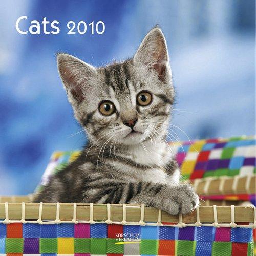 Katzen Cats 2010. Broschürenkalender