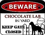 Beware Chocolate Lab in Yard Keep Gate Closed
