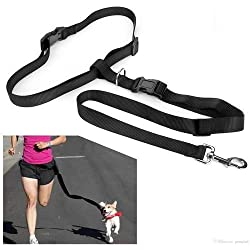 Hands Free Dog Leash - Excellent for Training, Walking, Hiking, Running, Jogging - Heavy Duty Strap, Handle, Rope, Harness Lead Strap - Pet Collar, Adjustable - 6 ft (Black)