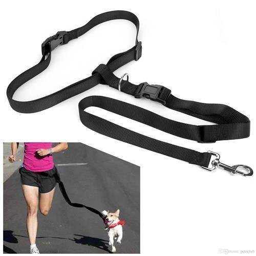 ree Dog Leash - Excellent for Training, Walking, Hiking, Running, Jogging - Heavy Duty Strap, Handle, Rope, Harness Lead Strap - Pet Collar, Adjustable - 6 ft (Black) ()