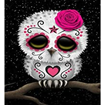 WM & MW 5D Diamond Painting, Novelty Panda Owl DIY Rhinestone Pasted Number Kits Embroidery Paintings Pictures Arts Craft for Wall Home Decor (F)