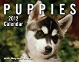 Puppies: 2012 Mini Day-to-Day Calendar