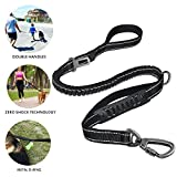 good dog bad dog leash - fashion&cool Heavy Duty Dog Leash, 6Ft Reflective Shock Absorbing Bungee Leash Perfect for Medium and Large Dog, Durable 2 Traffic Padded Handles,Car Seat Belt,Greater Control Safety Training,Walking