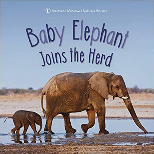Descargar Baby Elephant Joins The Herd PDF