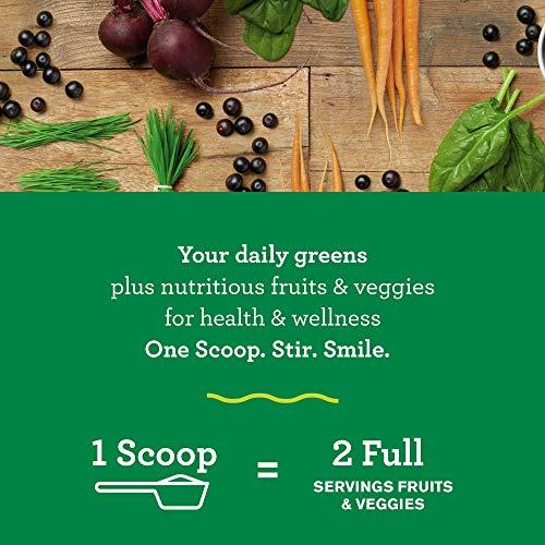 Amazing Grass Green Superfood: Super Greens Powder with Spirulina, Alfalfa, Digestive Enzymes & Probiotics, Original, 100 Servings 2