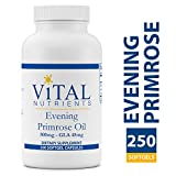 Vital Nutrients – Evening Primrose Oil 500 mg – Cold-Pressed Oil That Contains GLA, an Essential Omega-6 Fatty Acid – 250 Softgels For Sale