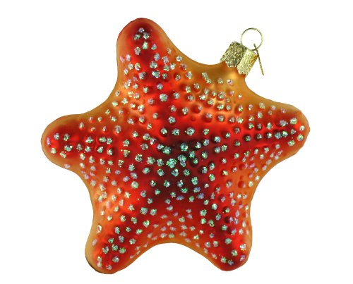 51QfUc4h1pL Amazing Starfish Christmas Ornaments