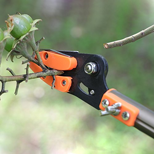 Finether Telescopic Pole Saw Long Reach Pole Pruner Lightweight Tree Trimmer with Bypass Pruner, Saw Blade, Guide Rod |Work Gloves for Free | Extends from 5.91 to 13.12 ft by Finether (Image #6)