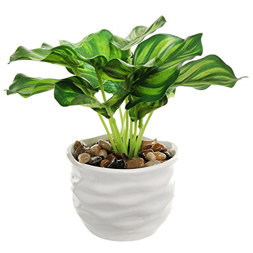 - MyGift Modern 4 Inch Small Tabletop Potted Artificial Plant/Faux Home Greenery w/White Ridged Ceramic Pot