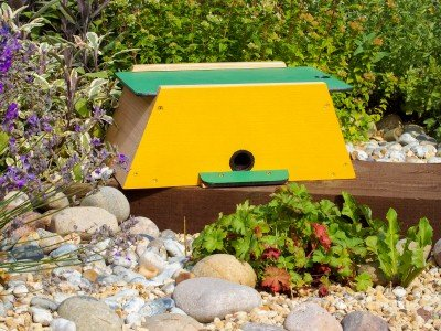 Wildlife World Bumble Bee Nest Box Kit BBN3