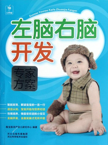 Left and Right Brain Development - Experts Program (Chinese Edition)