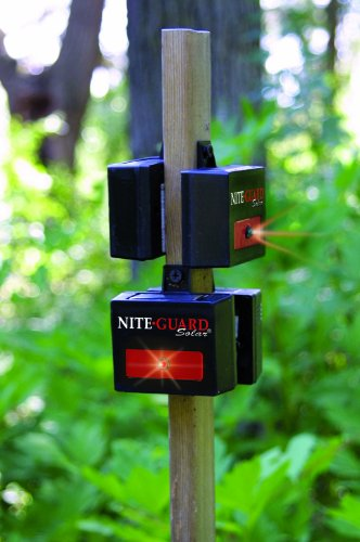 Nite Guard Solar Predator Control Light, (Pack of 4) - http://coolthings.us